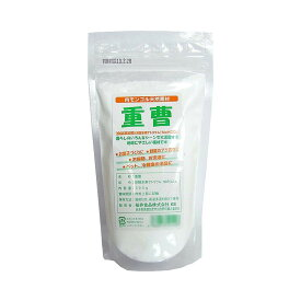 桜井食品 重曹 300g×20個 [ラッピング不可][代引不可][同梱不可]