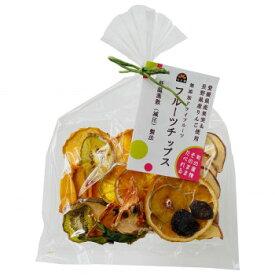 げんき本舗 国産 無添加 フルーツチップス(A)2個セット 60g×2袋