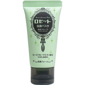 ロゼット洗顔パスタ 海泥スムース ミニ 洗顔フォーム 30g [キャンセル・変更・返品不可]