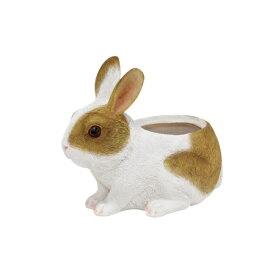 チアフルフレンズ ウサギノプランター (M) ◇ 100376902 [キャンセル・変更・返品不可]