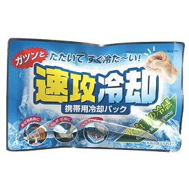 紀陽除虫菊 携帯用冷却パック 速攻冷却 [キャンセル・変更・返品不可]