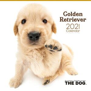 [わくわく製作所] カレンダー 2021年THE DOGカレンダー ゴールデンレトリーバー 1110 [キャンセル・変更・返品不可]