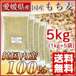国産 もち麦 5kg 愛媛県産(純国内産10割) [送料無料]