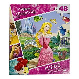 ディズニープリンセス パズル 24ピース ( オーロラ ) 15720c ジグソーパズル 易しい おおきい 知育 おうち遊び 並べる 眠れる森の美女 子供 あそび キッズ おもちゃ 幼児 未就園児 幼稚園 保育園