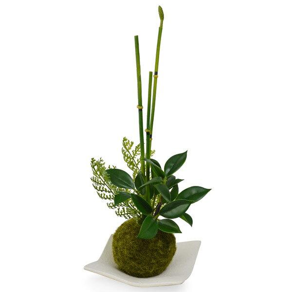 盆栽 フェイクグリーン 人工観葉植物 造花 トクサ×フィカス 苔玉 白波皿 CUPBON | 観葉植物 人工 リアル フェイク グリーン イミテーション インテリア インテリアグリーン おすすめ おしゃれ 和室 和風 和モダン 枯れない 引っ越し祝い ギフト プレゼント bonsai