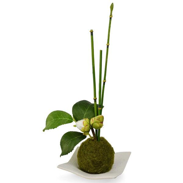 盆栽 フェイクグリーン 人工観葉植物 造花 トクサ×椿つぼみ 苔玉 白波皿 CUPBON