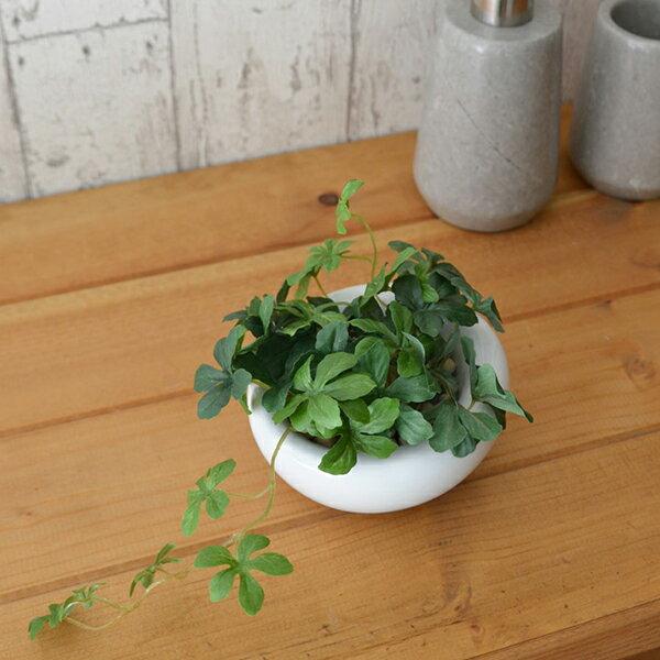 シュガーバイン エコストーン 白陶器S 人工観葉植物 フェイクグリーン 造花 GREENPARK
