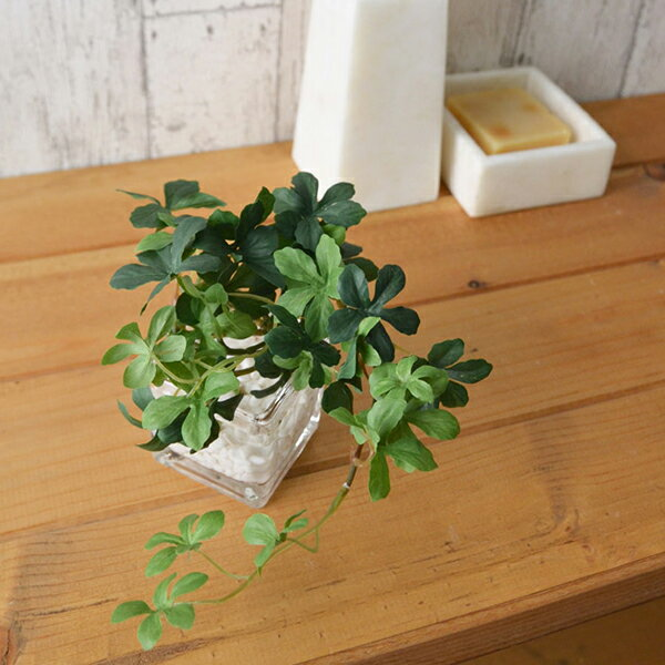 フェイクグリーン 人工観葉植物 造花 ミニ シュガーバイン ウォーターキューブ GREENPARK