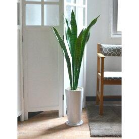 フェイクグリーン 人工観葉植物 造花 大型 サンセベリア エコストーン 皿付スリムプランター GREENPARK   観葉植物 観葉 植物 人工 人工植物 インテリアグリーン インテリア フェイク グリーン アーティフィシャルグリーン おしゃれ プランター イミテーショングリーン