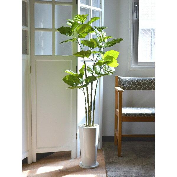 ウンベラータ エコストーン 皿付スリムプランター 人工観葉植物 フェイクグリーン 造花 GREENPARK