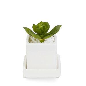 フェイクグリーン 人工観葉植物 造花 ミニ ミニエケベリア 白玉石 エコストーン 皿付ミニベース GREENPARK  おしゃれ インテリア 小さい イミテーション インテリアグリーン ギフト PRGR-0993