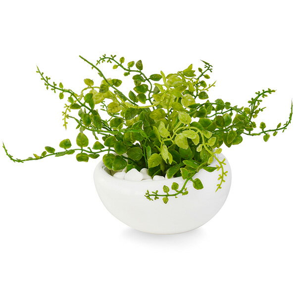 フェイクグリーン 人工観葉植物 造花 ミニ ボタンファーン 白玉石 白陶器S GREENPARK