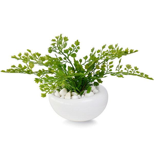 アジアンタム 白玉石 白陶器S 人工観葉植物 フェイクグリーン 造花 GREENPARK
