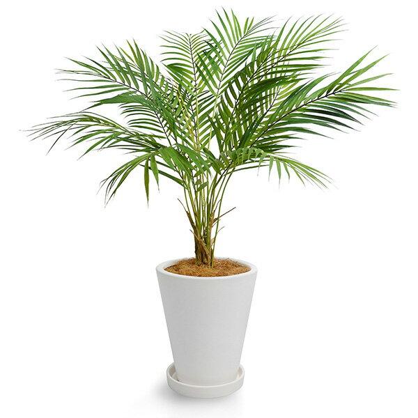 フェイクグリーン 人工観葉植物 造花 パームリーフ 皿付プランターH24 GREENPARK   観葉植物 観葉 植物 人工 人工植物 インテリアグリーン インテリア フェイク グリーン アーティフィシャルグリーン おしゃれ プランター イミテーショングリーン