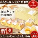 ねんりん家 ねんりんや バームクーヘン マウントバーム しっかり芽 薪形 バター風味 1本 紙袋付 ギフト 内祝 個包装 …