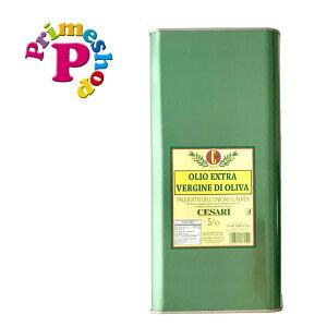 オリーブオイル エキストラバージ イタリア 高級 トスカーナ 5L 缶 エンリコ チェーザリ Enrico エクストラバージン 業務用