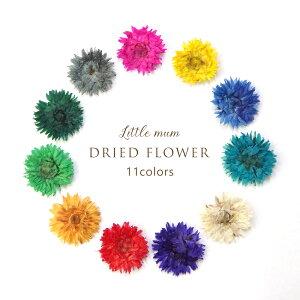 【在庫限り】ハンドメイド ドライフラワー 11種 花 ハーバリウム ハンドメイド レジン ガラスドーム アクセサリー