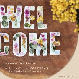 【在庫限り】天然ドライフラワー 10種 花 ハーバリウム ハンドメイド レジン ガラスドーム