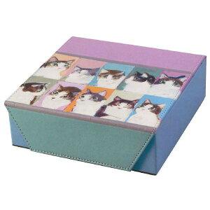 【クーポンあり】MAN コレクションケースー1 098410 収納 メガネ かわいい サングラス アクセサリー ギフト プレゼント 小物 贈り物 おしゃれ