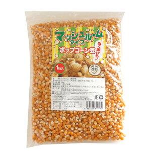 《ハニー》ポップコーン豆(マッシュルームタイプ)【1kg】