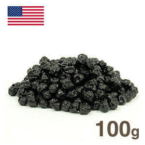 ワイルドブルーベリー【100g】