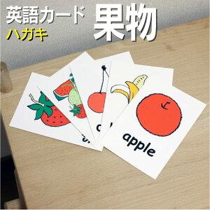フラッシュカード えらべる 英語 カード【果物】■ハガキ ラミネート加工■