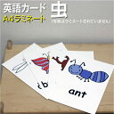 E insect a4l