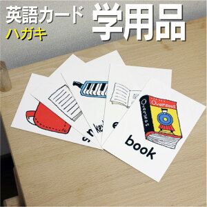 フラッシュカード えらべる 英語 カード【学用品】■ハガキ ラミネート加工■