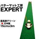 Expert15300