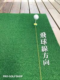 人工芝の上で本番用のティーを使える「ティークロウ」【USA製】【パターマット工房PROゴルフショップのお勧め商品】