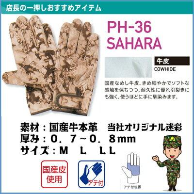 【PH-36-SAHARA】