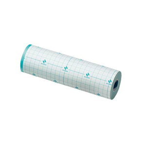 カテリープ(TM)FSロール 200mm*10m No.2010