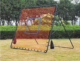 あす楽 PROMARK・プロマーク ピッチングマスター・PN-30 (野球 投球 練習 ネット ピッチングネット ピッチング練習 投球練習 守備練習 軟式 硬式 ソフト対応 ペグ付き キャリーバック付き)