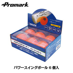 あす楽 PROMARK・プロマーク パワースイングボール6個入り HTB-60 (野球 練習 ボール 重いボール パワーボール トレーニングボール 鉄粉入り)