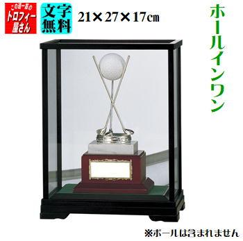 HOLEINONE(ホールインワン用)27cm【送料無料】★文字代無料★