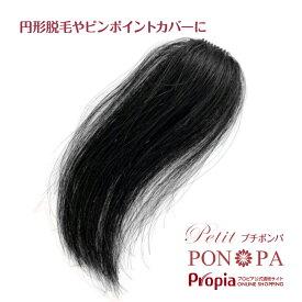 部分ウィッグ 人毛100% ポイントウィッグ 円形脱毛症にも Petit PON-PA プチポンパ