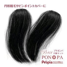 ポイントウィッグ 人毛100% 円形脱毛症 部分ウィッグ つむじ 総手植え トップのボリューム Petit PON-PA プチポンパ 2個セット割