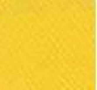 供修理使用的喷雾器涂料共松树黄色300ml