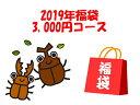2019年福袋3,000円コース1月4日から順次発送