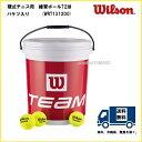 Wilson ウィルソン 硬式テニス練習用ノンプレッシャーボール 72球入 TRAINER TBAL 72 BALLS BUCKET WRT131200