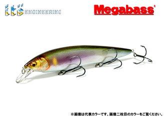 Megabus Kanata 香鱼超重低音彼方
