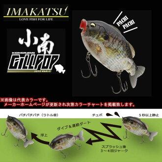 imakatsu小南吉尔pop 3D现实主义外壳加压