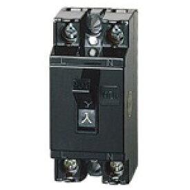 パナソニック 安全ブレーカHB型 2P1E 20A BS1112