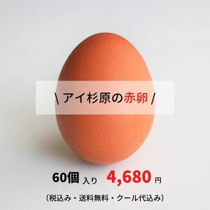 【アイ杉原の赤卵60個】(生卵50個+破損保証10個)この卵、ハマります!とくしま特選ブランド認定品!安心の「クール便」配送徳島県産 朝採り 産みたて 農場直送!しかも送料無料!