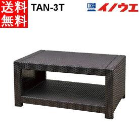 井上金庫 ラタン調センターテーブル TAN-3T W920 D580 H430