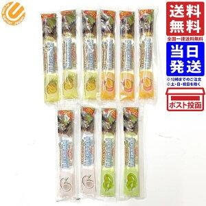 トロピカル スティック シャーベット 4種10本セット パインアップル マンゴー キウイ ココナッツ 送料無料
