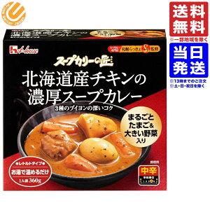 スープカリーの匠 北海道産チキンの濃厚スープカレー 360g