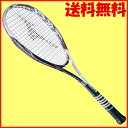 ガット無料◆工賃無料◆送料無料◆MIZUNO◆2015年11月発売◆ジスト Tゼロ 63JTN63101 ソフトテニスラケット ミズノ