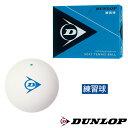 DUNLOP ソフトテニスボール 練習球 1箱(1ダース 12球入り) DSTBPRA2DOZ ダンロップ