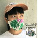 ハワイ 布マスク ハワイ柄 5枚セット 送料無料 立体 ハワイアン マスク 大人用 女性用 即日 発送 花柄 小さめ 薄手 薄い 黒 青 アソー…